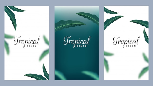 Set of tropical dream template design decorated natural leaves background set