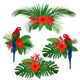 Set of tropical floral elements for greeting card