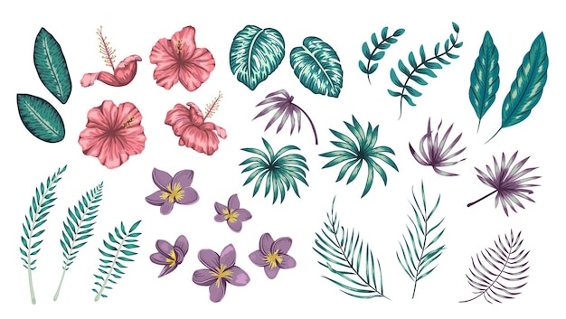 Set of tropical flowers and leaves isolated on white