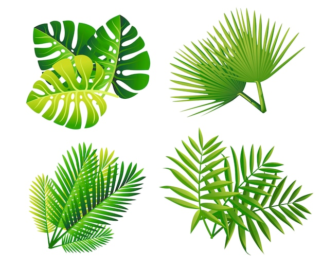 Set of tropical green leaves. flat style palm leaf. exotic plants icon. illustration isolated on white background.