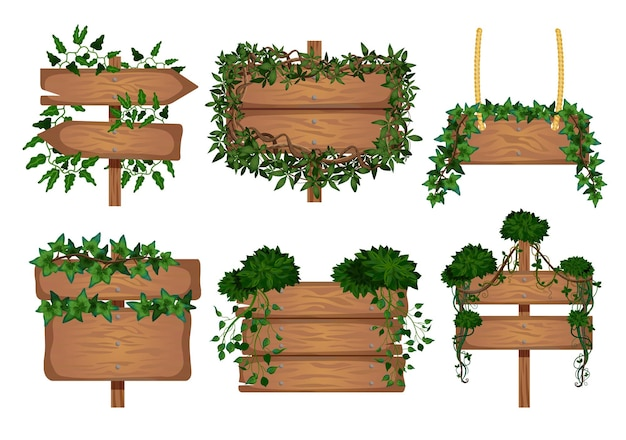 Set of tropical lianas wooden boards s with isolated images of signboards wrapped by vine leaves