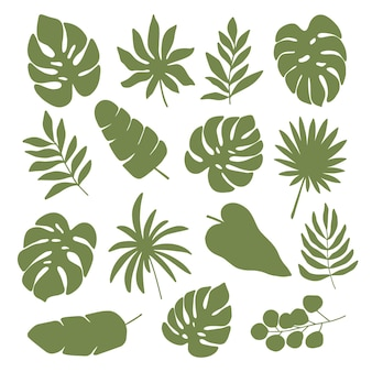 Set of tropical plant leaves silhouette. monstera, palm, eucalyptus, banana leaf clipart. jungle illustration isolated on white background.