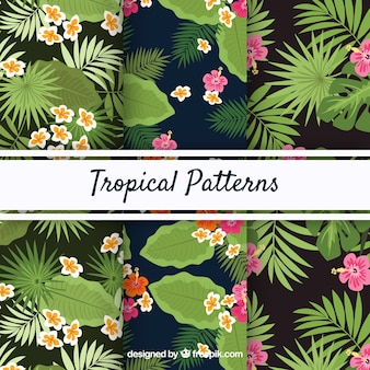 Set of tropical summer patterns with different plants