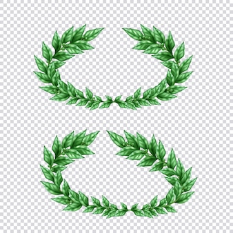 Set of two isolated green laurel wreaths in realistic style on transparent background illustration