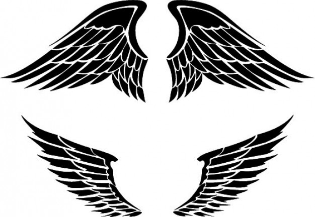 Set of two wings designs
