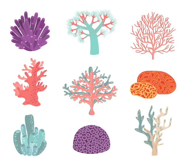 Set of underwater color coral elements