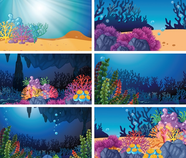 Set of underwater scenes