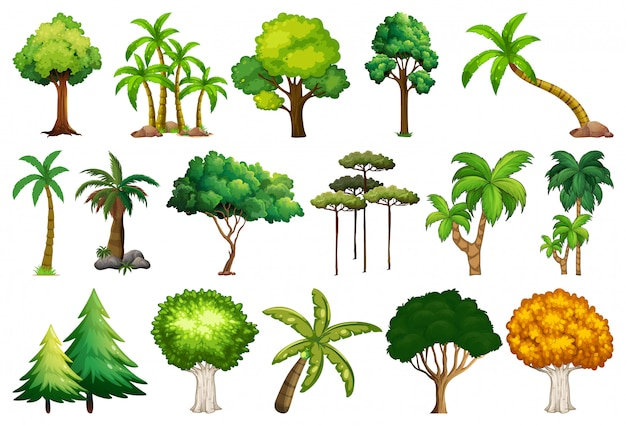 Set of variety plants and trees