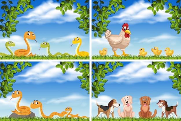 Set of various animals in nature scenes