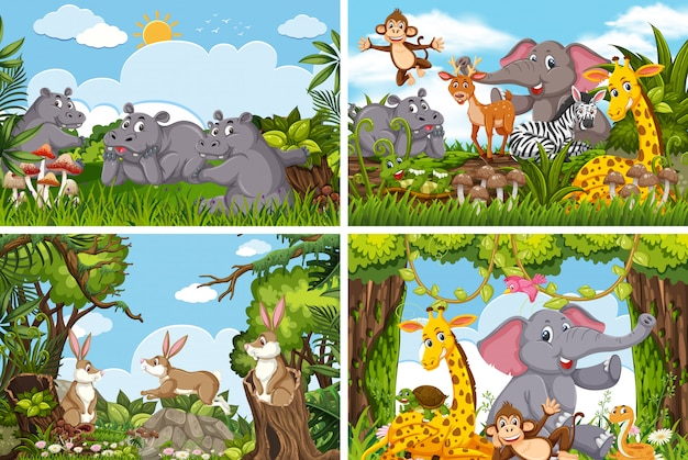 Set of various animals in nature scenes