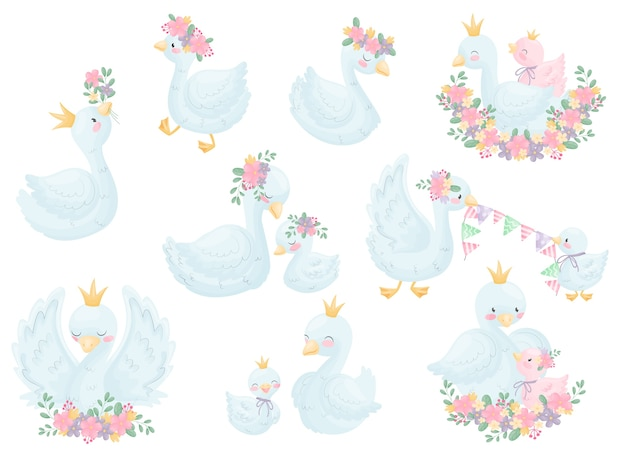 Set of various image swans in a crown and flowers.  illustration on white background.