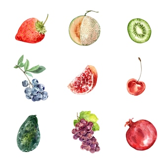 Set of various isolated fruits