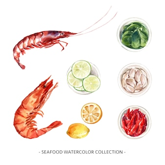 Set of various isolated seafood watercolor illustration for decorative use.