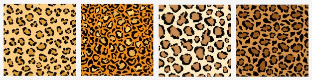 Set of various leopard skin seamless pattern colored decoration exotic template