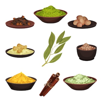 Set of various natural spices. aromatic seasonings for food. cooking ingredients. culinary theme