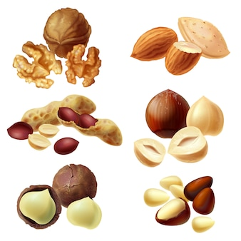 Set of various nuts, hazelnut, macadamia, peanut, almond, walnut, pine nuts