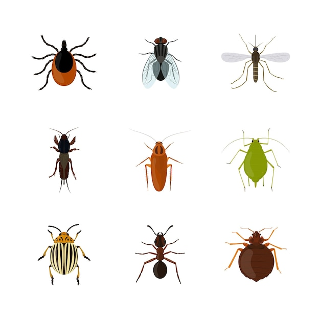 Set of various vermin insects isolated on white background. insect vector illustration