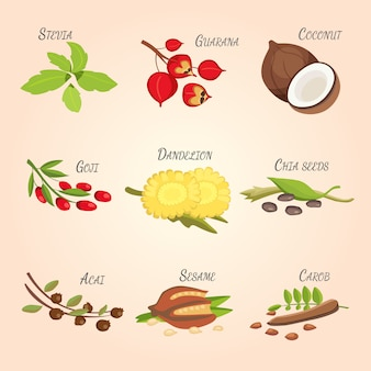 Set of vector cartoon superfoods. fresh fruits sketch background. illustration for your design.