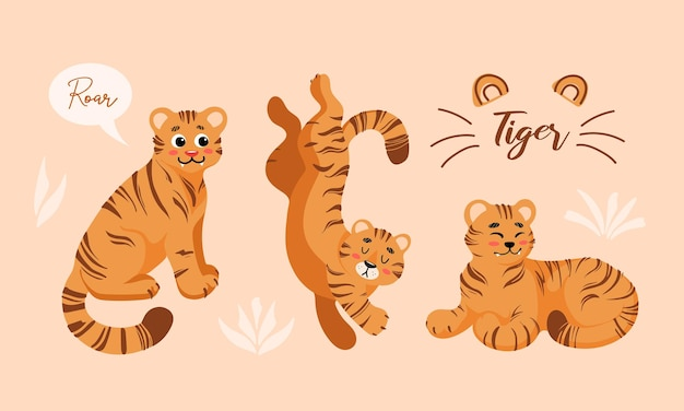 Set of vector childish cartoon illustrations of cute tiger in different positions isolated icon