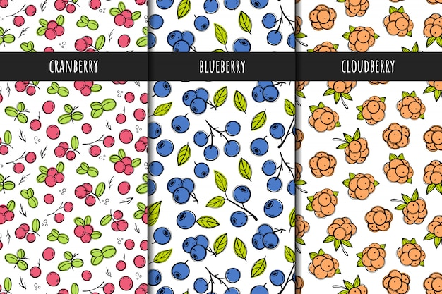 Set of vector seamless patterns. berry patterns with cranberries, cloudberries, blueberries. hand drawn style