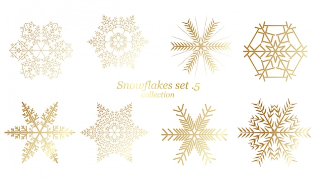 Set of vector snowflakes christmas with gold luxury color