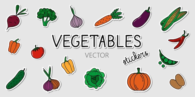 Set of vector vegetables stickers collection of cartoon colorful stickers with healthy food