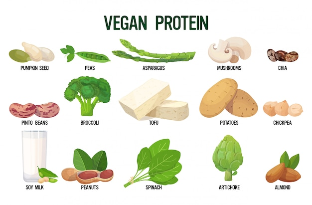 Set vegan sources of protein fresh organic vegetarian food collection isolated