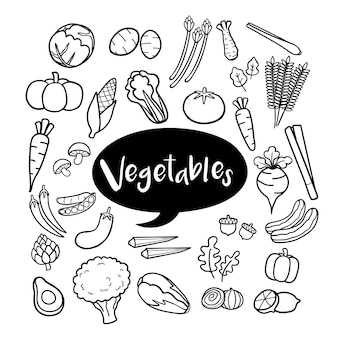 Set of vegetable elements in hand drawn doodles