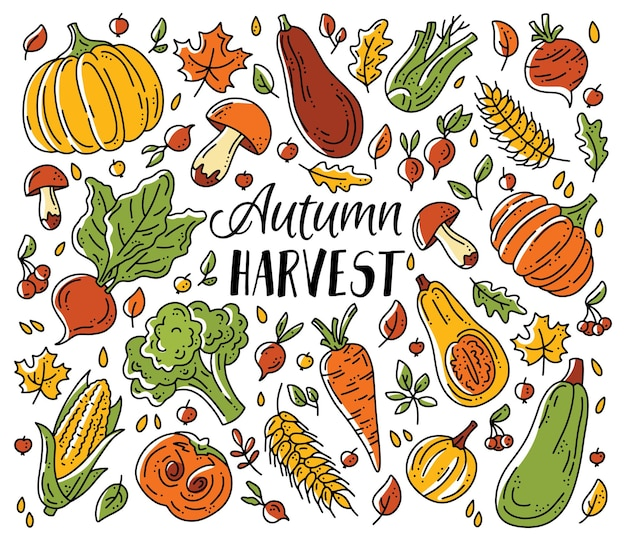 A set of vegetables and mushrooms for the autumn harvest in doodle style