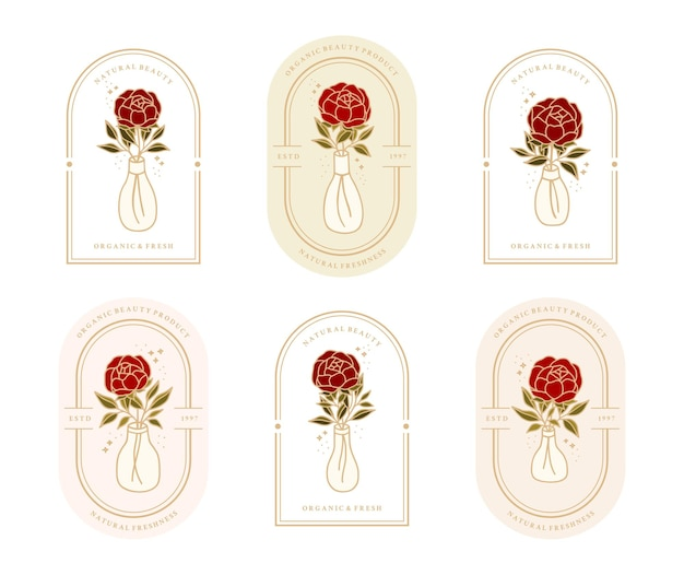 Set of vintage botanical rose flower, leaf branch, water bottle element for feminine logo and beauty brand
