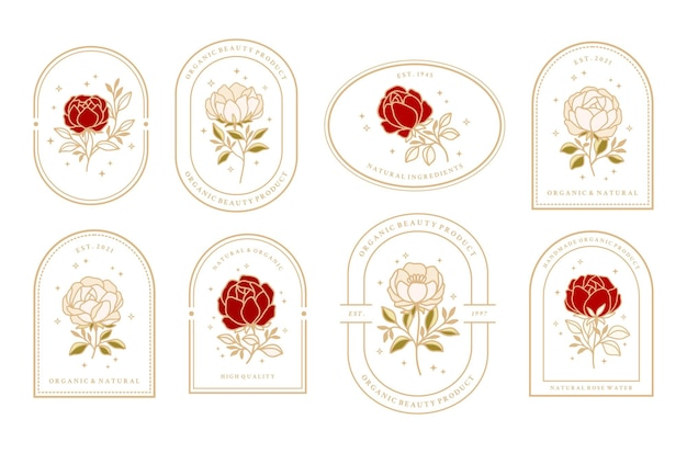 Set of vintage feminine beauty rose and peony floral logo elements with frame for women