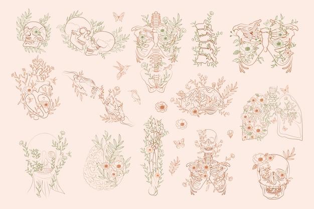 Set of vintage floral anatomy elements in one line. human skeleton and inner organs with flowers