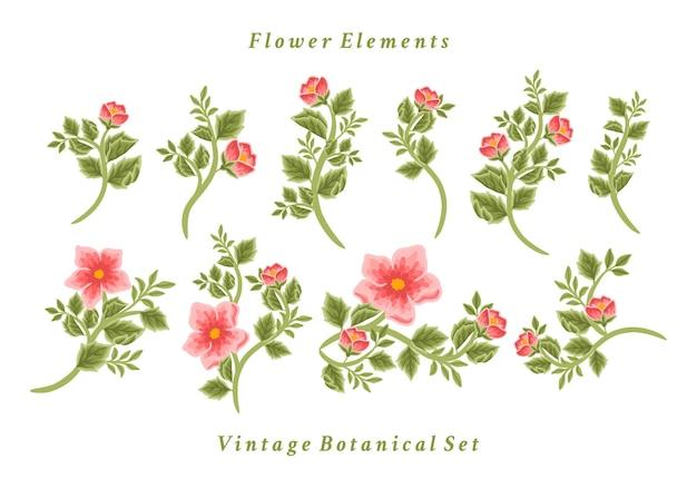 Set of vintage floral bouquet arrangements