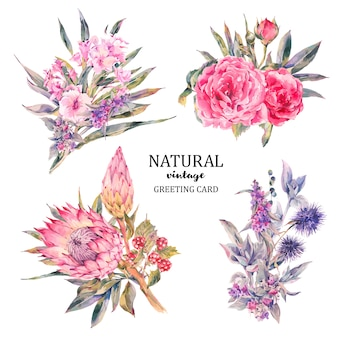 Set of vintage floral vector bouquet of roses, protea