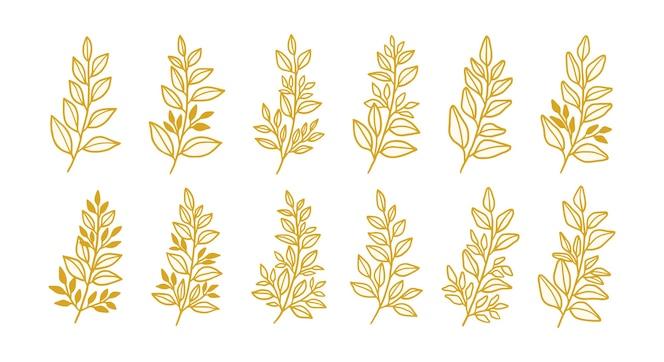 set of vintage gold leaf and branch elements