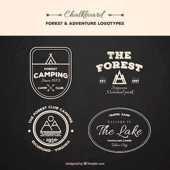 Set of vintage logos expedition