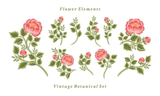 Set of vintage peony flower bouquet arrangements