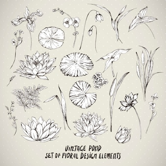 Set of vintage pond water flowers elements