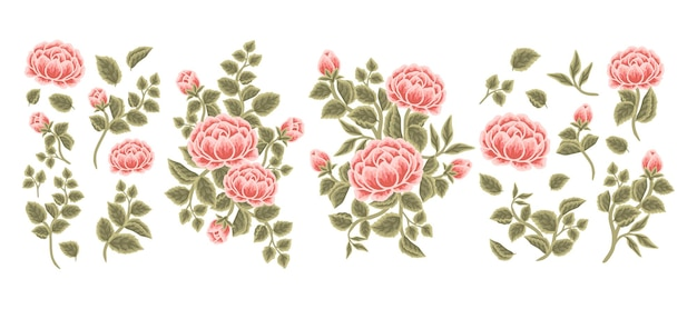 Set of vintage rose, peony flower, leaf branch, feminine floral bouquet arrangements
