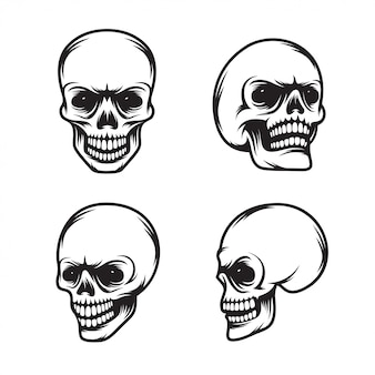 Set of vintage style skulls in four view plans