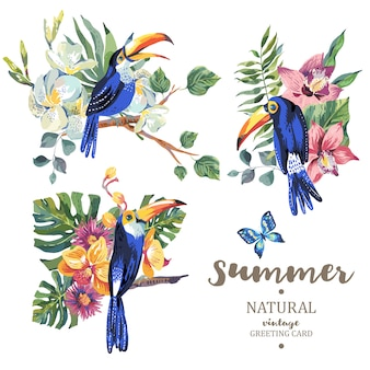 Set of vintage summer toucan with butterflies and flowers