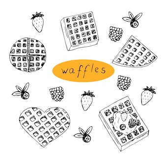 Set of waffles and berries vector illustration hand drawing sketch