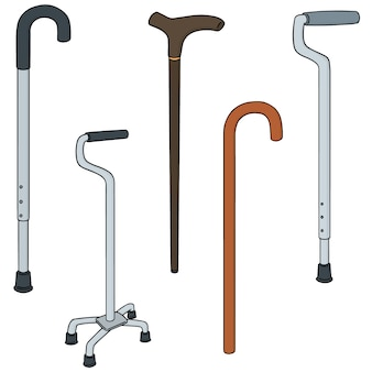 Set of walking stick