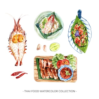 Set of watercolor design shrimp, chili, garlic illustration .