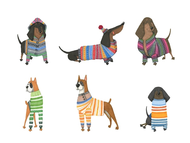 Set of watercolor dogs in warm sweaters.