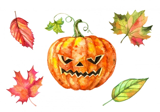 Set of watercolor elements for halloween. pumpkin and autumn leaves.
