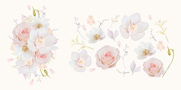 핑크 장미 난초와 아네모네 꽃의 수채화 요소 설정