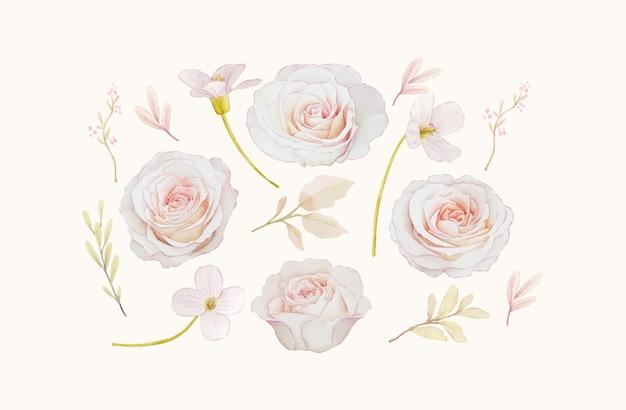 バラの水彩要素を設定します