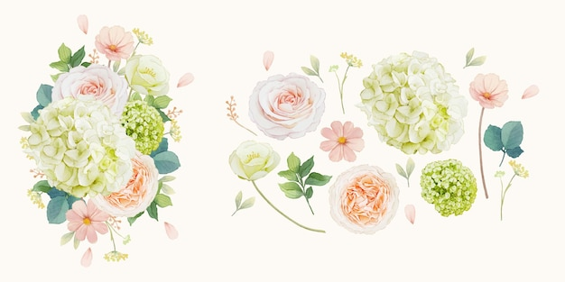 Set watercolor elements of peach roses and hydrangea flower