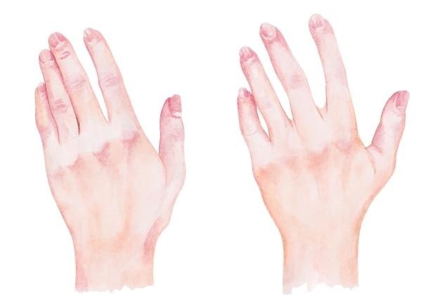 Set of watercolor female hands